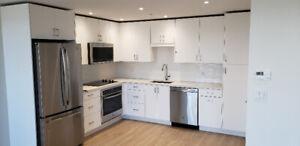 Brand New 1 Bedroom - Spring Garden Road Apartments
