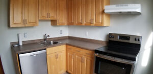 Welland: Brand New 2 bdrm, Pet Friendly Luxury Apartment