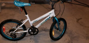 18'' FlyGirl Supercycle Bike