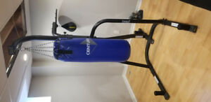 80 LBS PUNCHING BAG / EVERLAST STAND / SPEED BAG