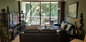Large furnished one bedroom available Sep 01,