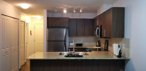 Fully Furnished Modern 1 bedroom + Den Apartment Condo