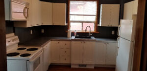 Spacious Bright Freshly updated 3 bed apartment close to Dwtn