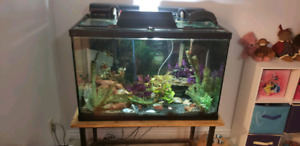 60 Gal Tank for 300 Or Best Offer