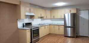 Newly Renovated 2 Bedroom Basement Cloverdale available forrent