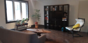 Sunny room in a large, modern apt in plateau - available now