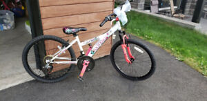 24 inch AVEGO Girls Bike