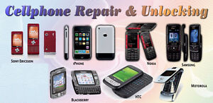 Password Unlocking, Software Repair, Data Recovery services