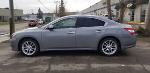 Beautiful 2009 Nissan Maxima fully loaded and AMVIC certified