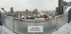 LARGE 3 1/2 for rent NEAR MCGILL w/ DOUBLE BALCONY and NICE VIEW