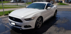 2017 Ford Mustang V6 Fastback Coupe (2 door)