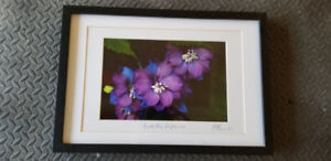 Floral picture with black frame