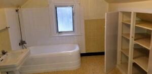 One bdrm apartment available for a working professional