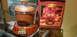 Chinese Electric Herbal Cooker