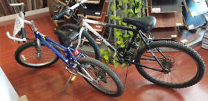 Two bikes for sale - Arashi J3 Adventurer and Skyline Grizzly