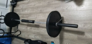 Olympic Bar Plus  2 plates 45Lb