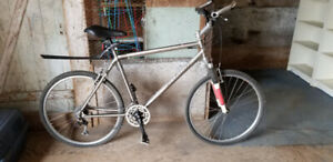 Bicycle: Full titanium hard tail frame XL