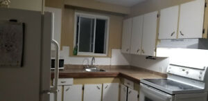 Room available in student home *Steps* away from Mohawk College