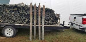 TREATED FENCE POSTS FOR SALE     4-6 inch