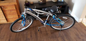 "26"" Northwoods Pomona Men's Cruiser"
