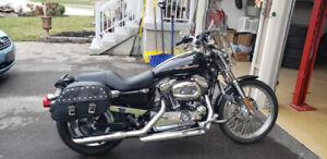 2004 Harley Davidson 1200 Coustom Sportster