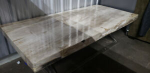 ELTE Coffee Table Solid Petrified Wood Slab Stainless Steel Base