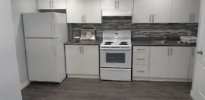 1 Bedroom Newly constructed basement for Rent