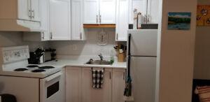 BOWMANVILLE One bedroom basement apartment.($1200 a month)