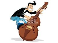 Double Bass Wanted - Cash Waiting!