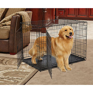 Looking for xl dog crate