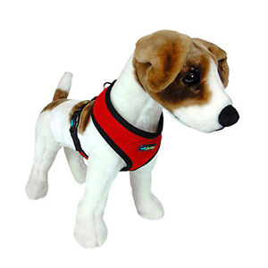Puppy Harness Size Small