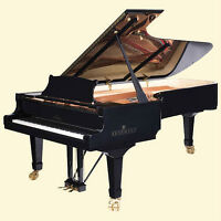BRODMANN GRANDS: finer pianos than others twice the price?