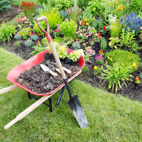 MONTHLY LAWN MAINTENANCE SERVICES - CONTACT US FOR FREE QUOTE