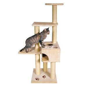 Looking for a Cat Climber