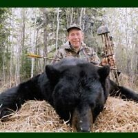 Bear Hunting Business For Sale