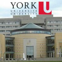 York U Tutor: Accounting | Business | Finance | Math