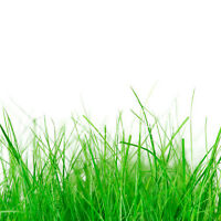 Lawn Care/Landscape Helpers Needed - StartNOW - Students Welcome