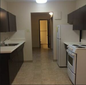 1 bedroom apartment for rent October 1, 2016