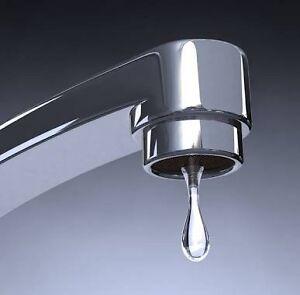 Leaking tap repairs / shower heads Singleton Rockingham Area Preview