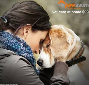 Pawssum - Vet house call service for $99 - Sydney Wide