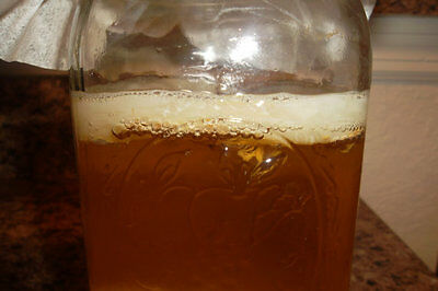 KOMBUCHA SCOBY W/ TEA NEAR 4