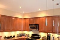 *** Painting & Pro Handyman Services in Halton ***