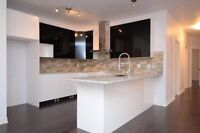 Beautiful 5 1/2 condo at the first floor 1350sqf Montreal-Nord
