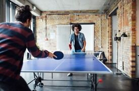 Ping Pong, table tennis partner