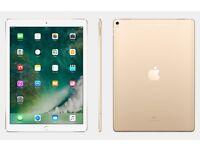iPad Pro 9.7 32gb gold.