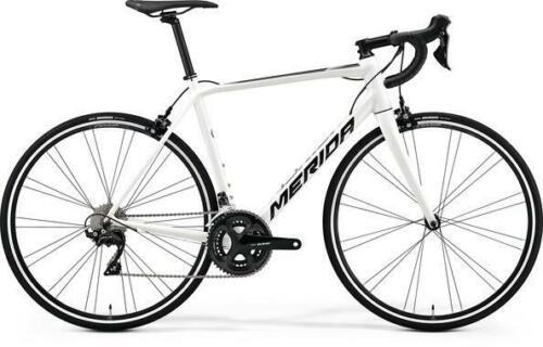 Merida Scultura 400 2019 Road Race bikes Fitness Gravel 11 White  4XS 38