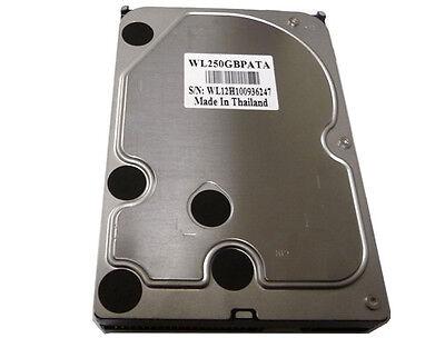 250gb 8mb Cache 7200rpm Ata/100 (pata) Eide 3.5 Hard Drive - Free Shiping