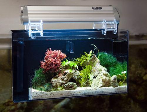 how to put afilter in side the aquariam