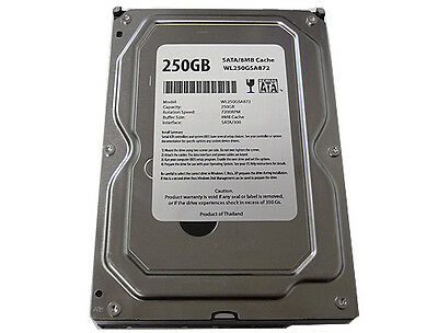 "New 250GB 8MB Cache 7200RPM SATA2 3.5"" Desktop Hard Drive PC/MAC (FREE SHIPPING)"