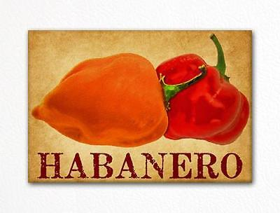 Habanero Chili Peppers Decorative Kitchen Fridge Magnet for sale  Aurora